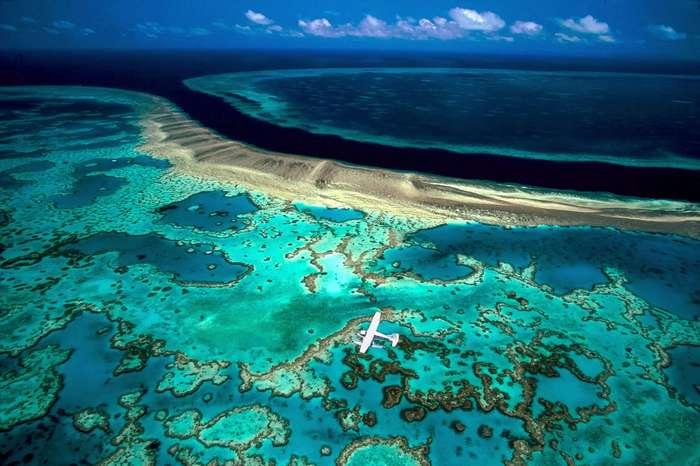 Печальная весть: Большой Барьерный Риф умирает, и его уже не спасти