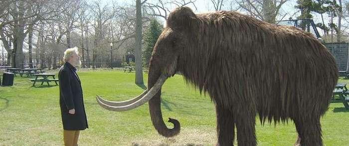 10 вымерших животных, которые могут воскреснуть