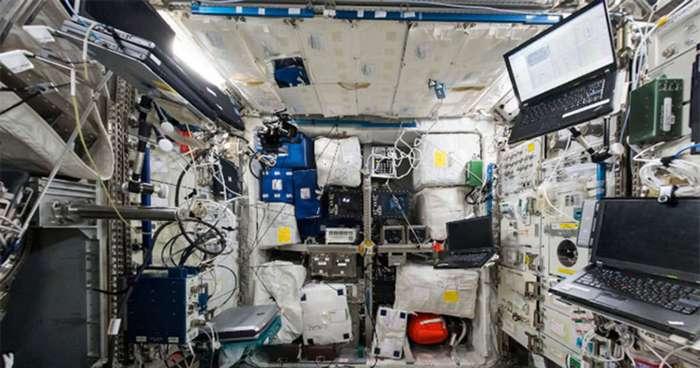 Как плесень подготовила NASA к встрече с внеземной жизнью