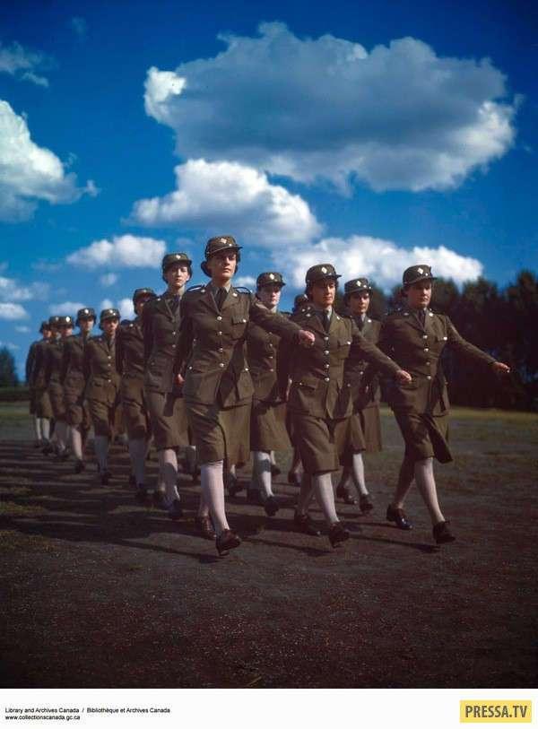 Канадский женский армейский корпус (13 фото)