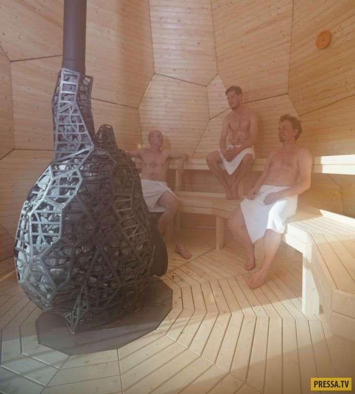 Сауна-яйцо с печью специальной конструкции (15 фото)