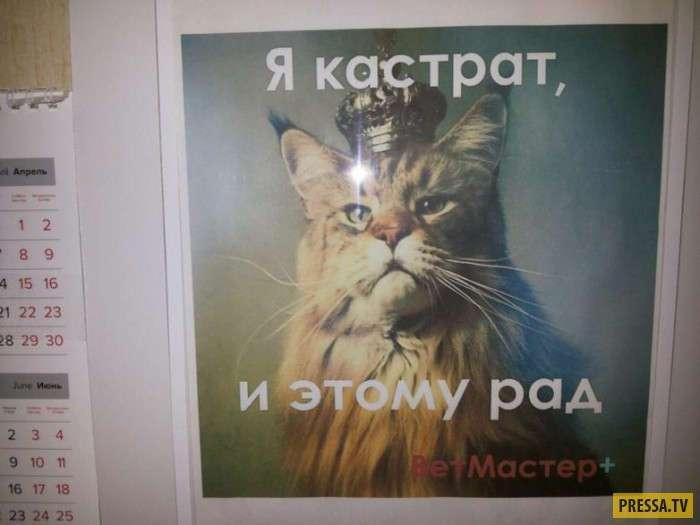 Смешные объявления, реклама и прочие маразмы (30 фото)