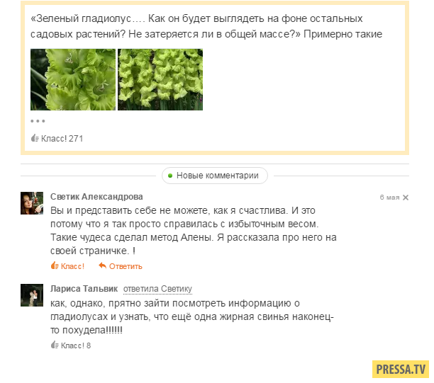 Смешные комментарии и смс (42 скрина)