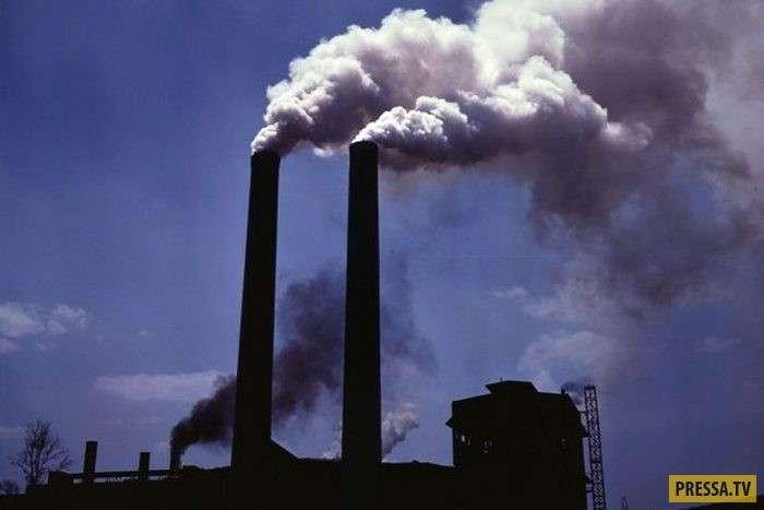 ТОП-15 последствий исчезновения человека с планеты Земля (16 фото)