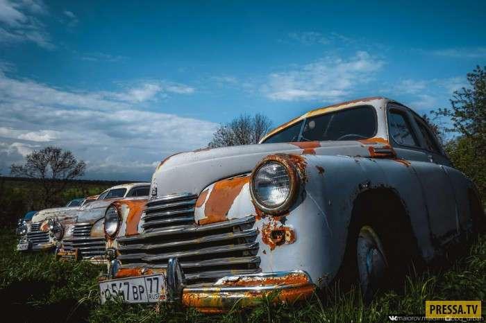 Уникальный автомузей или автопогост советских автомобилей (35 фото)