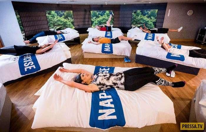 Новый метод похудения при помощи... сна (5 фото)