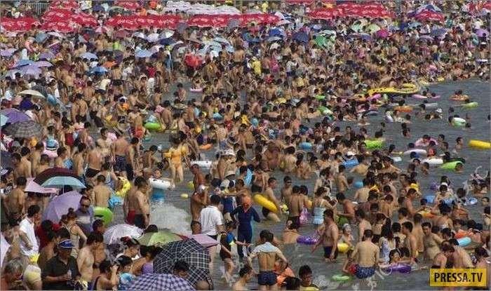 ТОП-10 неприятных и отвратительных фактов о бассейнах (10 фото)