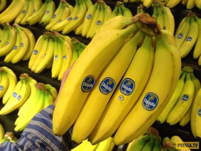 ТОП-10 продуктов, которые могут исчезнуть в ближайшее время (10 фото)