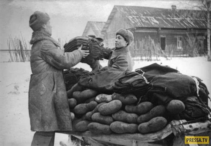 ТОП-45 удивительных и интересных факта о русских (13 фото)