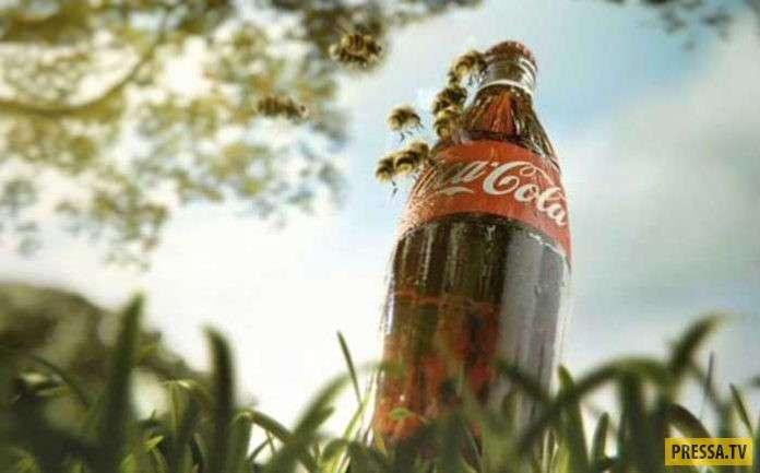 ТОП-14 способов использования Кока-Колы в быту (15 фото)