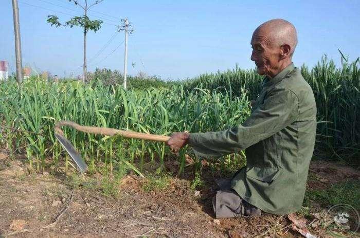 Безногий фермер всю жизнь обеспечивал семью, занимаясь хозяйством (8 фото)