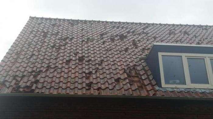Убийственный град в Голландии размером с теннисный мячик (15 фото)