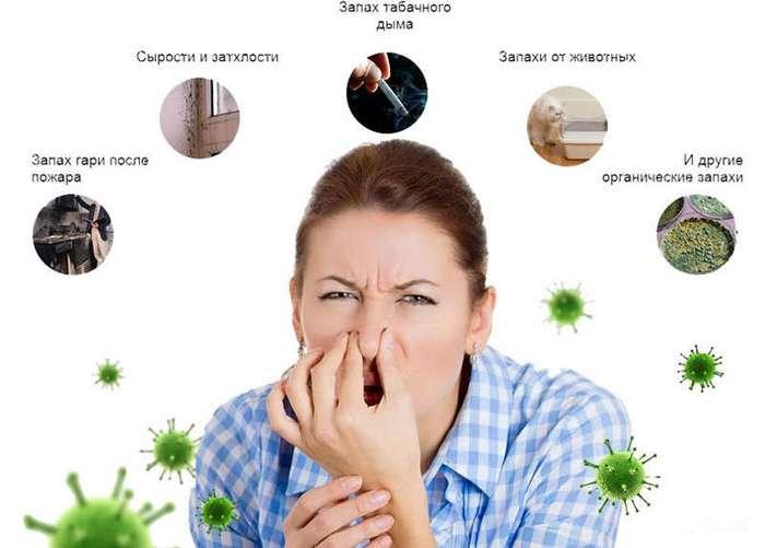 Запахи (4 фото)