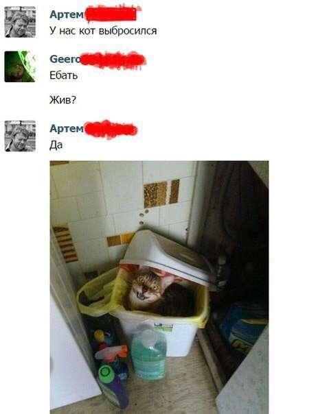Смешные комментарии и высказывания из социальных сетей (34 фото)