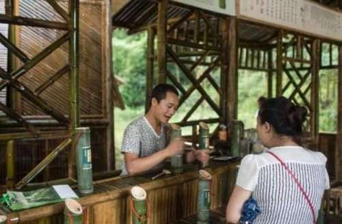 Топ-10: Удивительные факты про бамбук