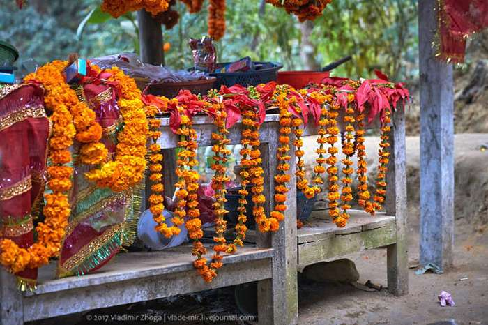 Самый кровожадный храм в Непале (9 фото)