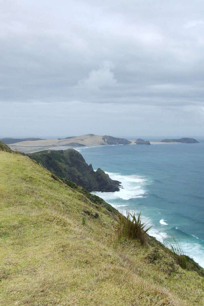 Новая Зеландия. Записки иммигранта (40 фото)