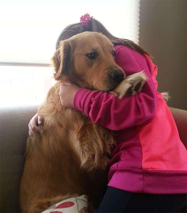 Чего боятся собаки? (39 фото + 3 гиф)