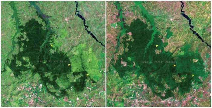 До и после - как время изменило поверхность Земли (16 фото)