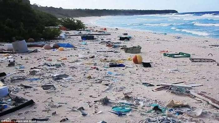 Райский остров превратился в самое загрязненное место на планете (8 фото)