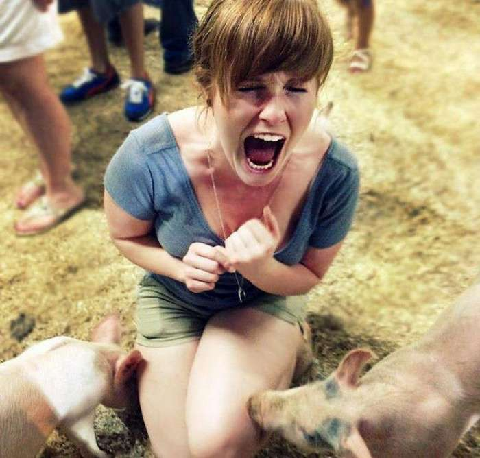 Животные против женщин (24 фото)