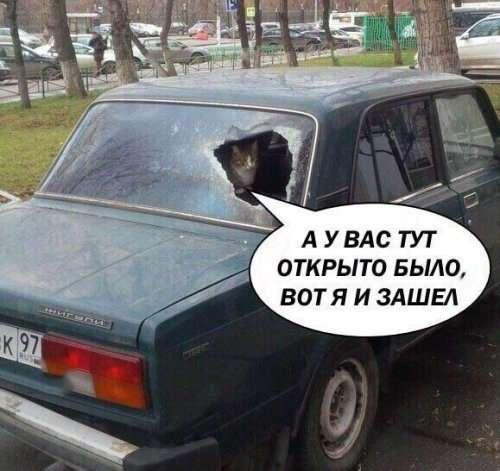 Новые АВТОприкольные картинки на Бугаге (20 шт)