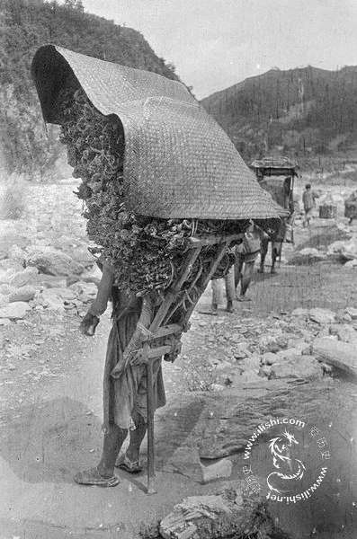 Китайские кули-носильщики (12 фото)