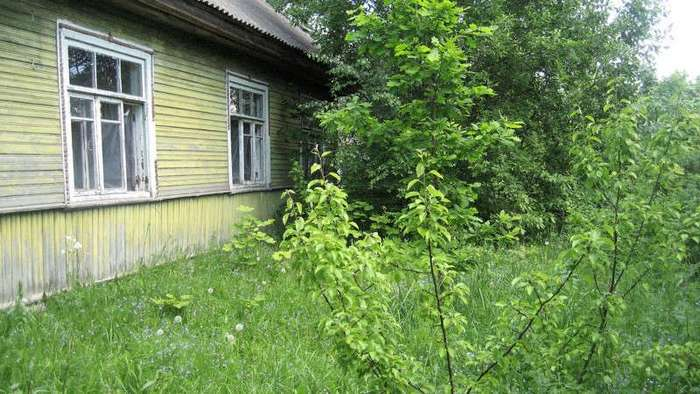 Как деревенскую халупу превратить в загородный дом мечты (84 фото)