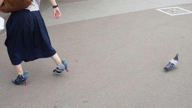 Туфли-голуби, ведь ты этого достойна! (21 фото)