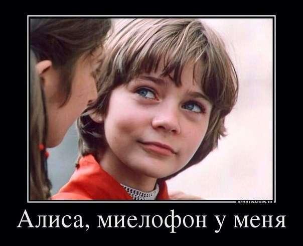 У -Яндекса- появился голосовой помощник -Алиса- (3 фото)