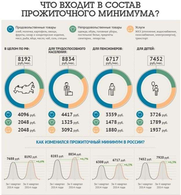 Потребительская корзина россиянина: как государство представляет нашу жизнь (6 фото)