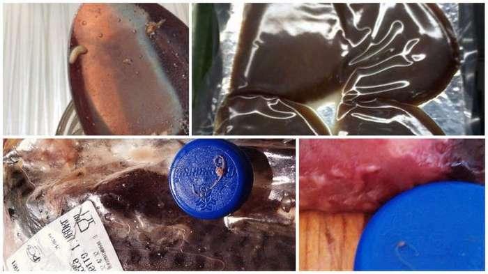 Жаба, зубы и грызуны: самые невероятные находки в продуктах питания (20 фото)