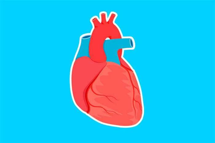 Эти исследования подтверждают, что разбитое сердце - не просто метафора