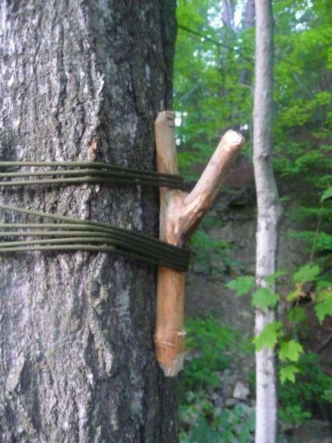 Полезные лайфхаки для отдыхающих на природе
