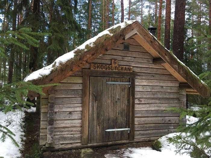 Поближе к природе: самый простой (если не сказать, примитивный) отель в лесу