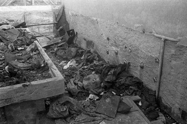 Пепел, кровь и молитва. Репортаж из бывшего концлагеря СС Майданек