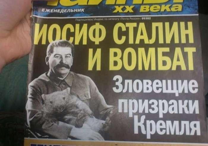 Креативные заголовки желтой прессы (20 фото)
