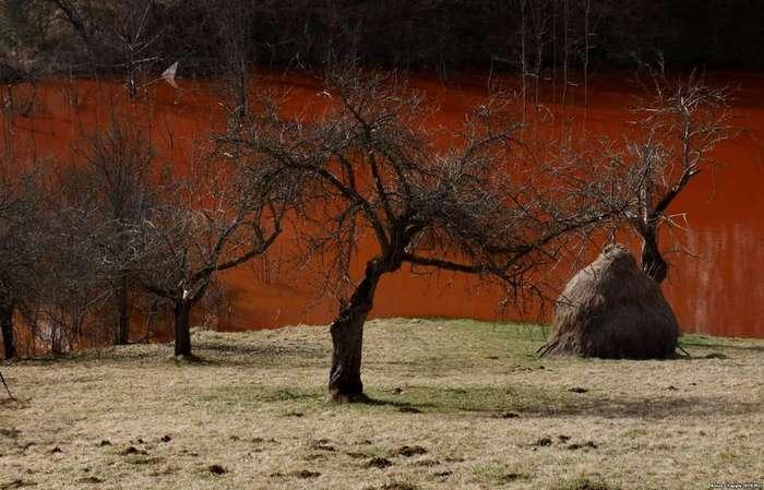 Джамэна: полвека в медной трясине (15 фото)