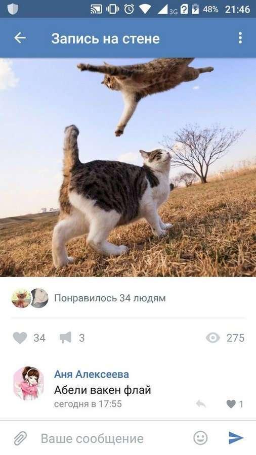 Смешные комментарии из социальных сетей (43)