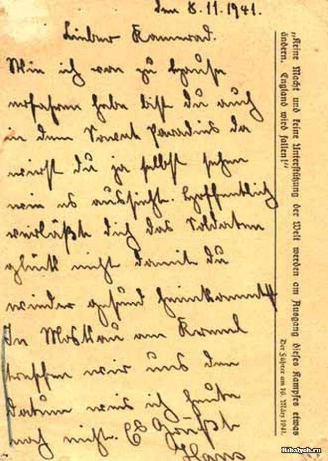 видео, где письма с фронта немцев этих сучек