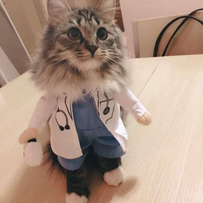 Интересные истории из медицинской практики (4 фото)