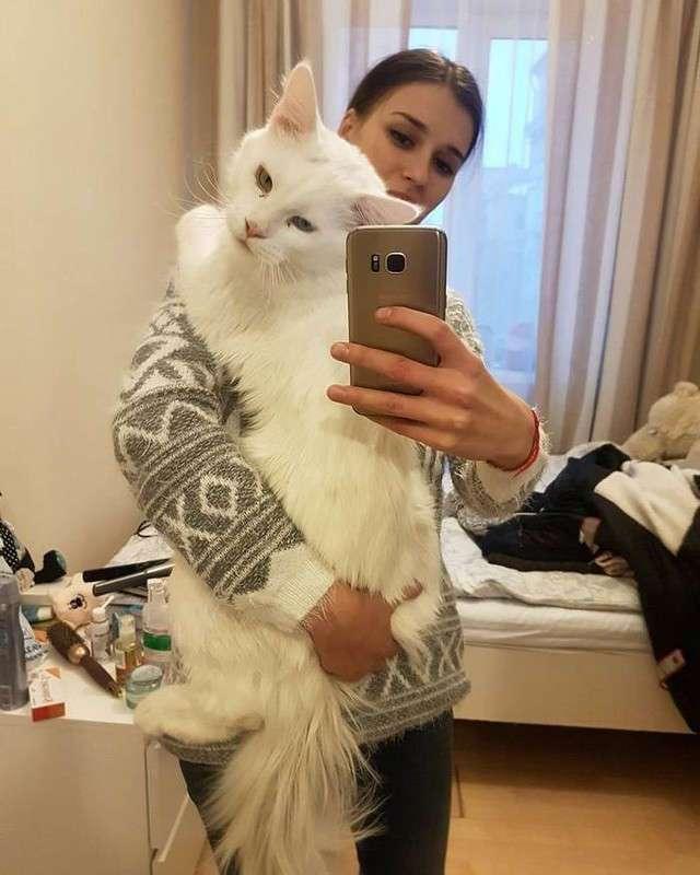 Этот мэйкун просто обожает обнимашки!