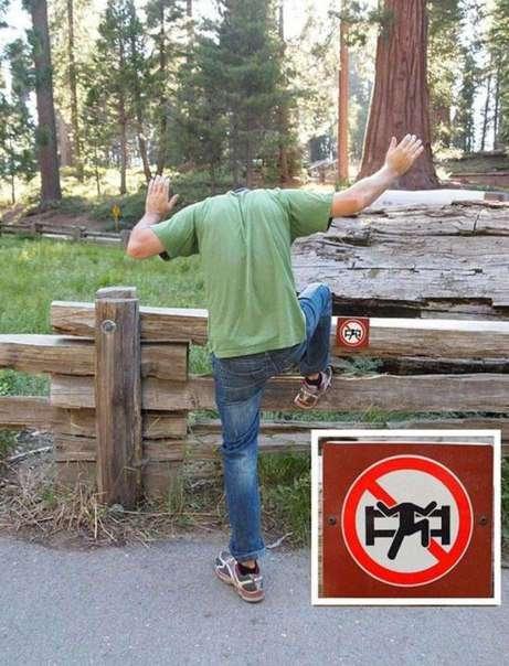 Нарушай правила, дерзай, бунтуй, будь неадекватным!