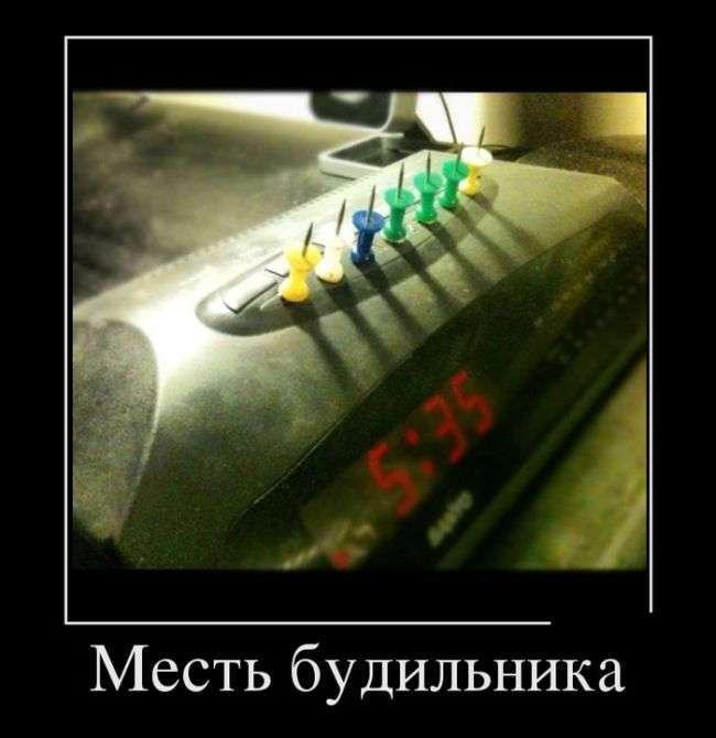 Демотиваторы - 920