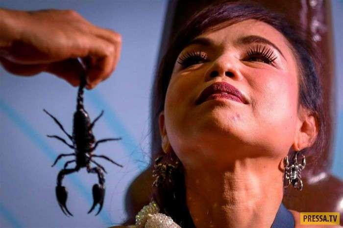 Kanchana Kaetkaew тайская женщина, которая не боится скорпионов (11 фото)