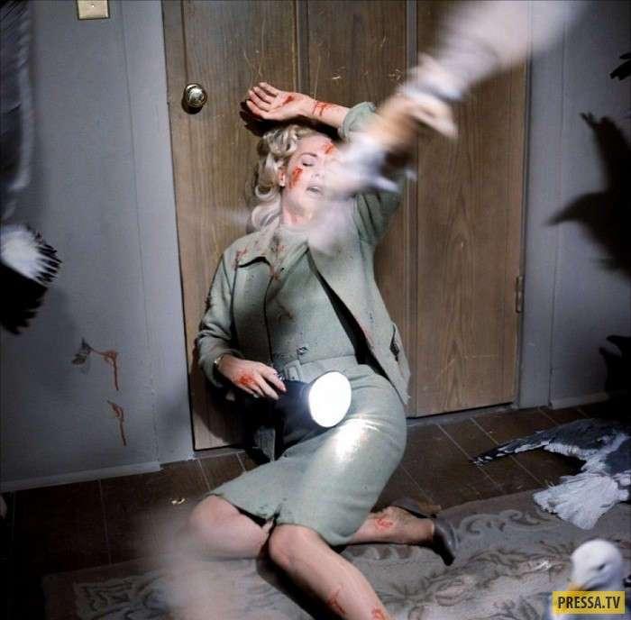Блистательная Типпи Хедрен: месть Хичкока (17 фото)