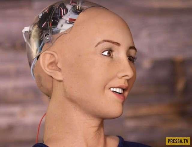 Робот София дала интервью (3 фото + видео)