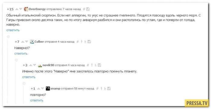 Смешные комментарии и смс-диалоги (38 скринов)