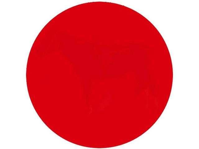 Внимательно посмотрите на круг. Сможете ли вы увидеть скрытое изображение?