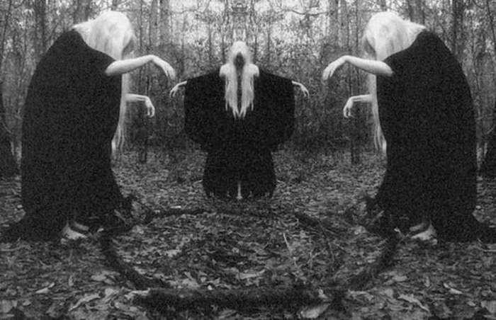 15 мифов и теорий о чупакабре (16 фото)